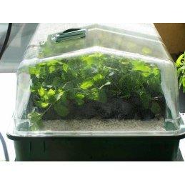 Hubey Perlite 6 Liter, Sauerstoff- und Feuchtigkeitsspeicher, Zuschlagstoff zur Bodenverbesserung
