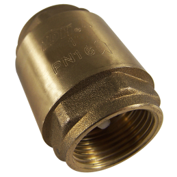 Check valve 2.54cm(1\'\'), internal thread