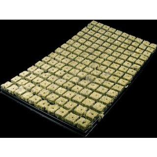 Grodan Anzuchtmatte mit 150 Anzuchtwürfeln im plug-tray 53 x 31cm