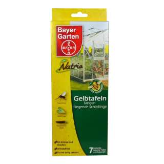 BAYER Garten, Yellow insect glue traps