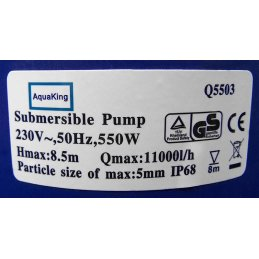 Submersible Pump Aquaking Q5503, 11000 l/h, 8,5m Height